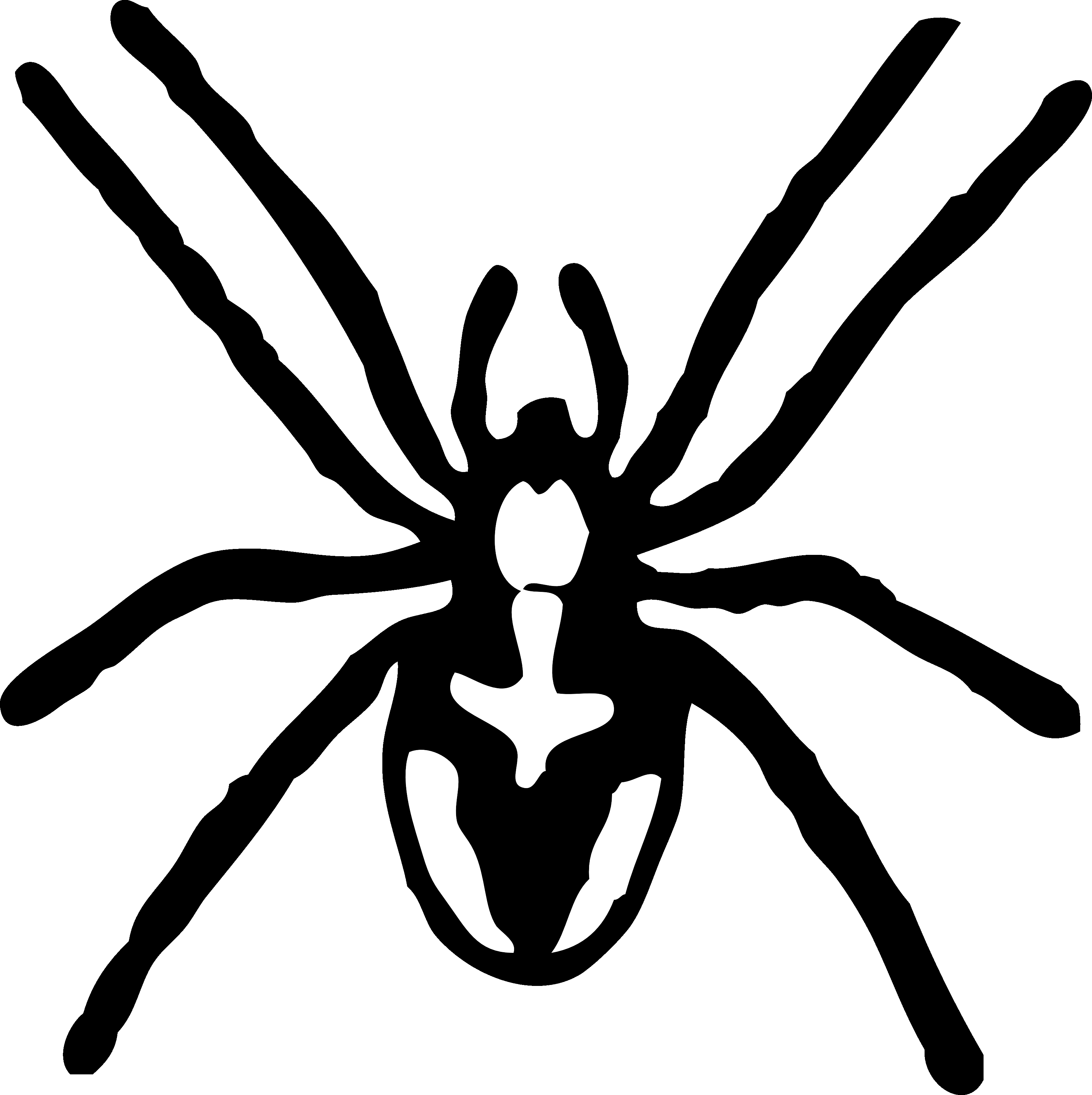 Striped Spider Clipart