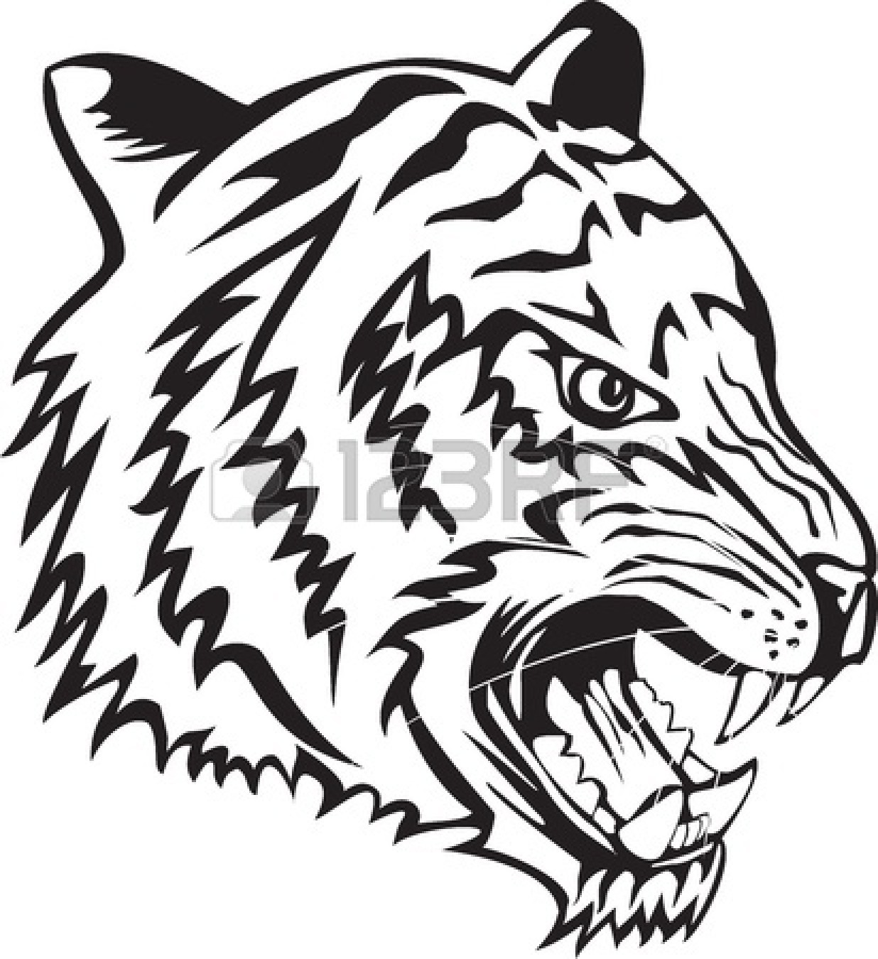 Tiger Eyes Clipart Black And White