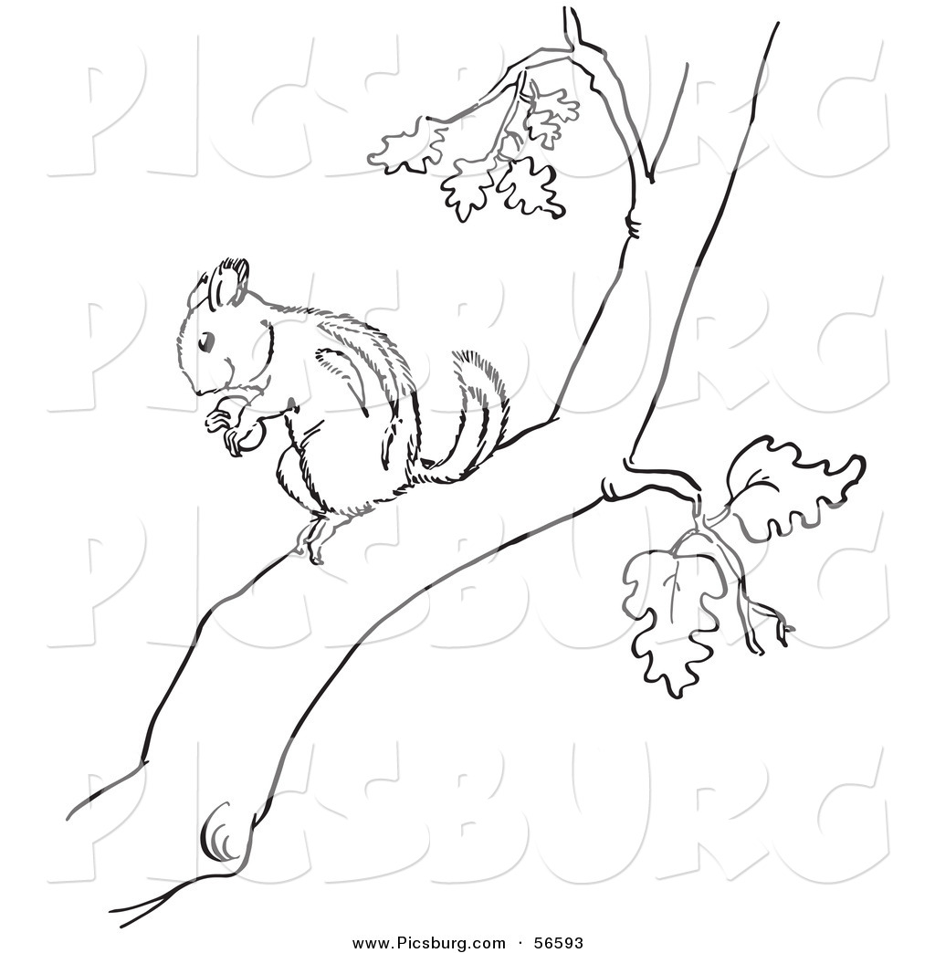 Tree Branch Black And White Clipart 20 Free Cliparts