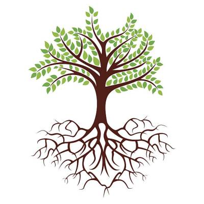 tree with long roots clipart - Clipground