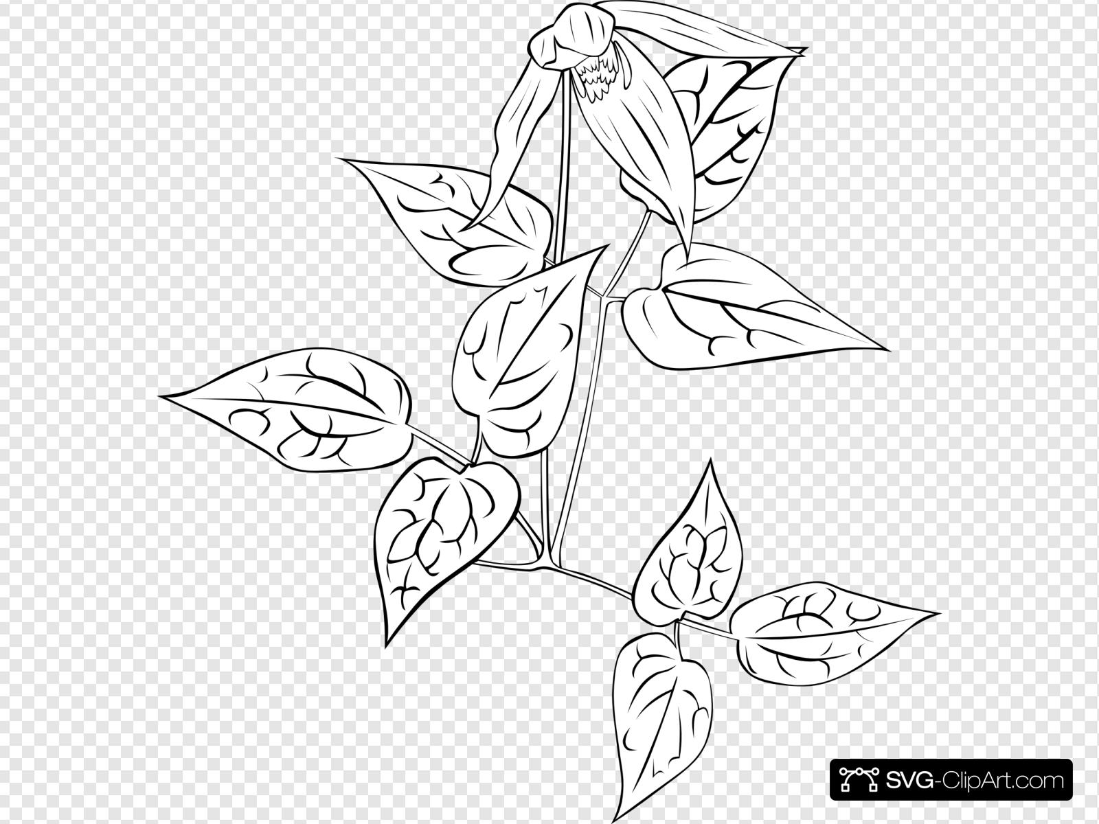 Western Clipart Coloring Book 10 Free Cliparts