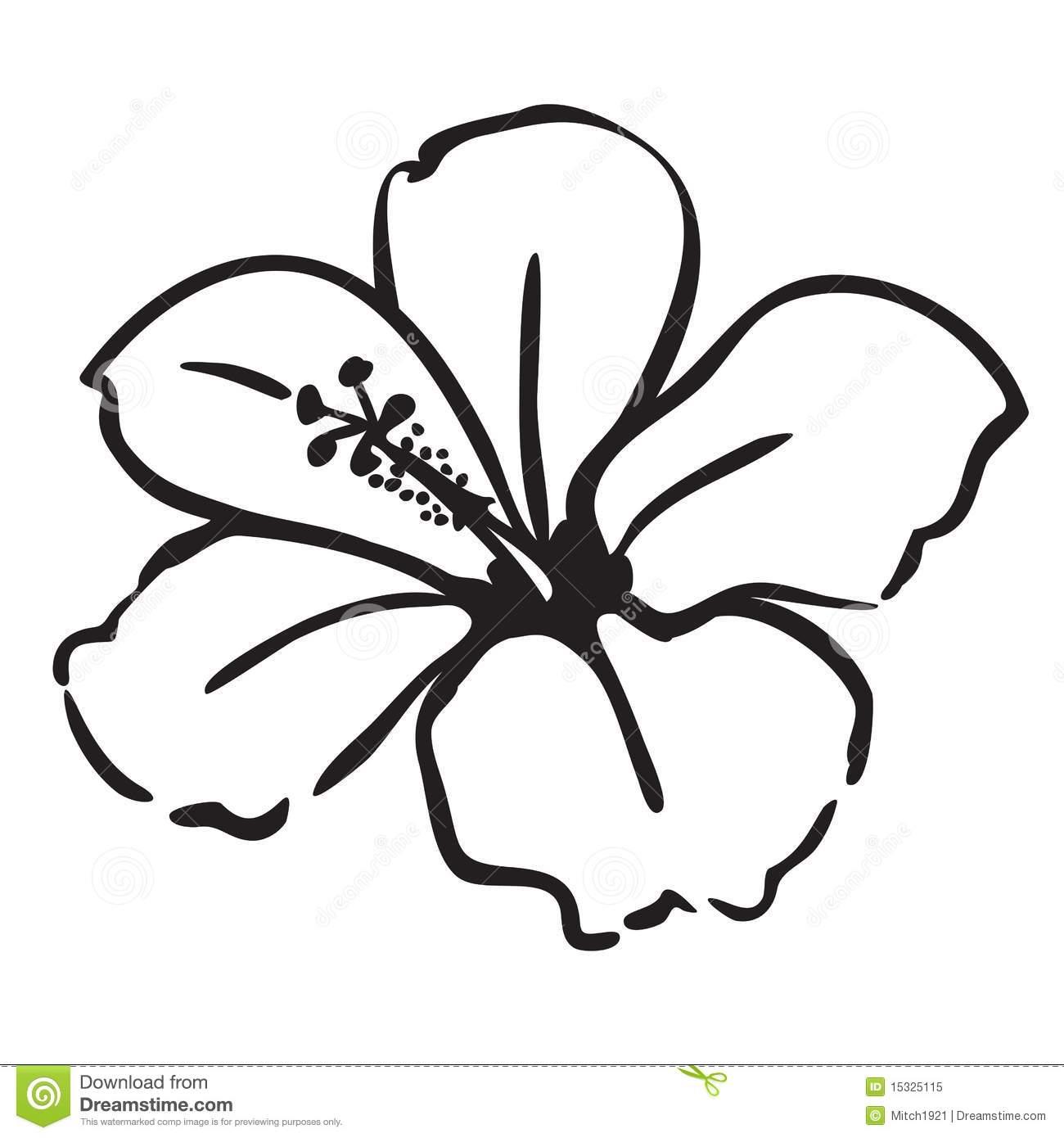 White Hibiscus Flower Clipart
