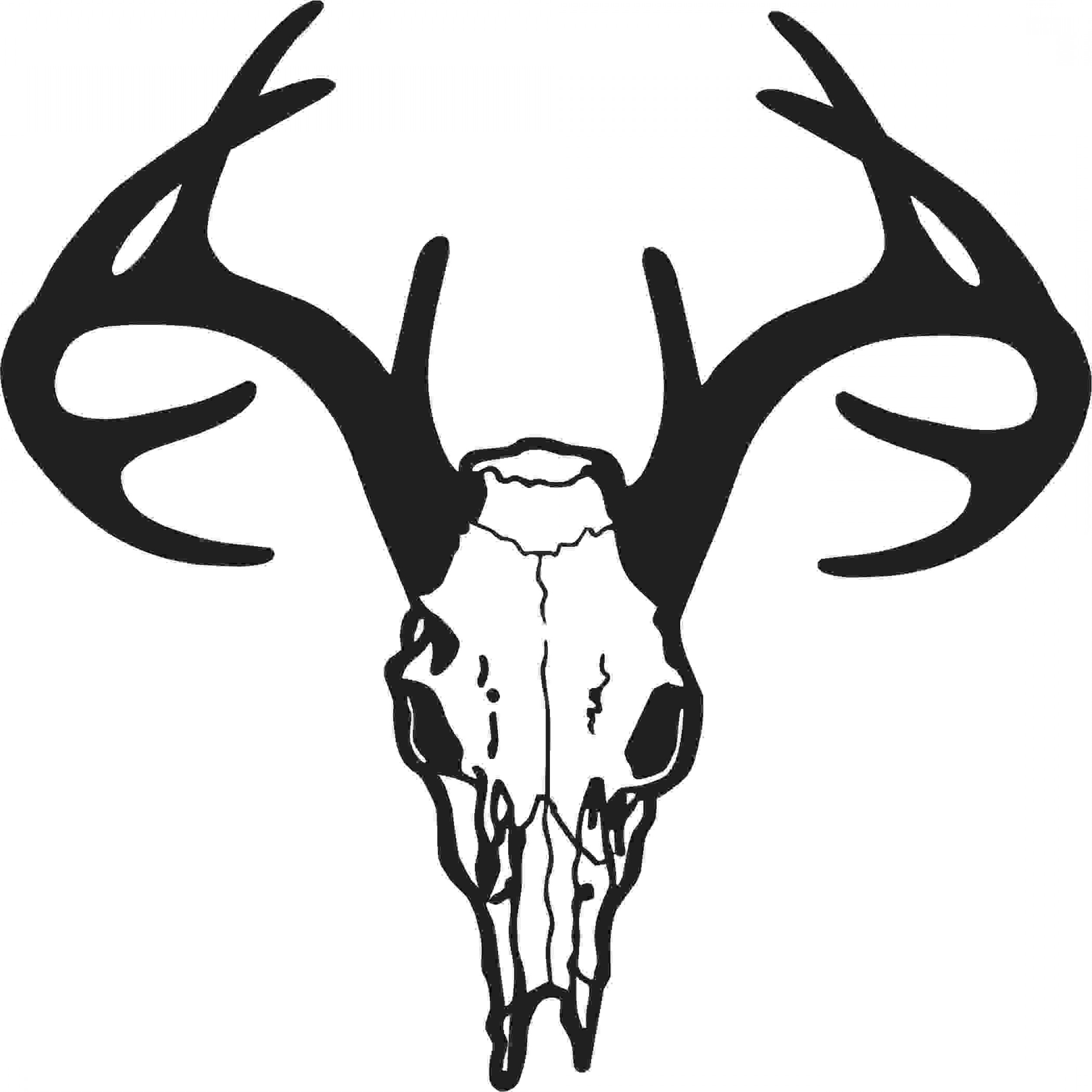 White Tail Deer Buck Head Clipart 20 Free Cliparts