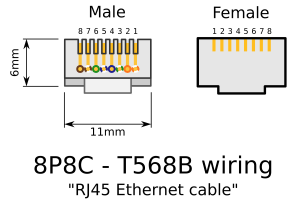 Wiring diagram clipart  Clipground