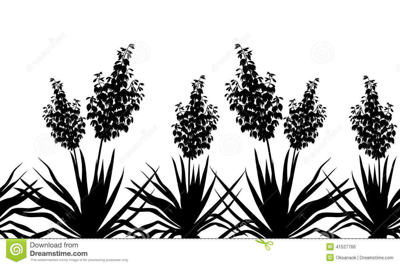 Yucca Clipart 20 Free Cliparts