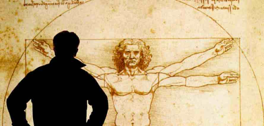 A person looks at an electronic display of The Vitruvian Man 1490, a drawing by Leonardo da Vinci. Photograph: Alamy Stock Photo
