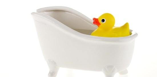 duck-1474148_640