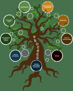 proccess-work