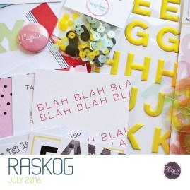 CK_Jul16-kit19