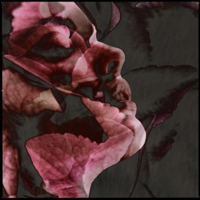 Fragrance 6
