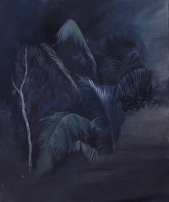 Jungle Fragment