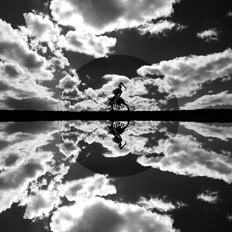 Reflection of the Warrior