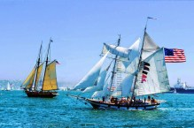 Misc-Best view of tall ships