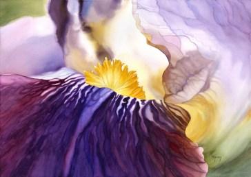 Amethyst Iris
