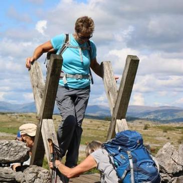 Whitbarrow Scar walk Thursday 8th August 2019