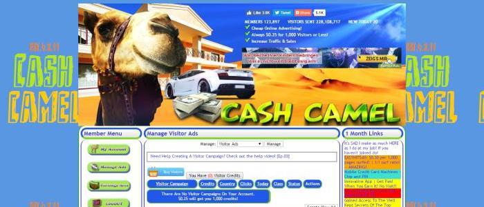 cashcamel review