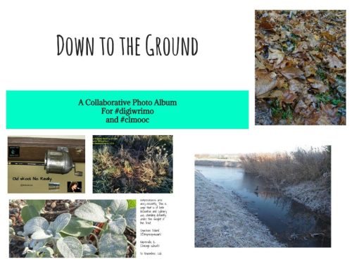 downgroundcollage1