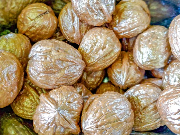 Walnuts after they are painted
