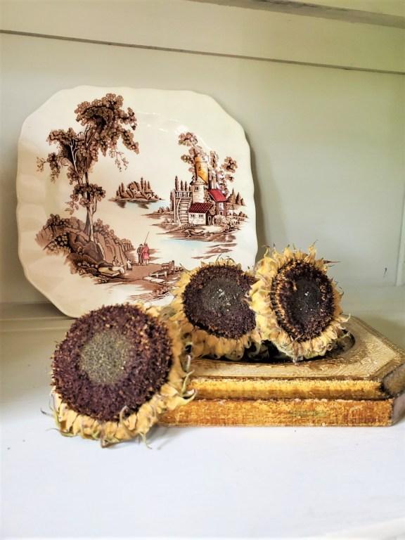dry sunflower heads on a Florentine frame