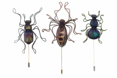 Beetle brooch pins