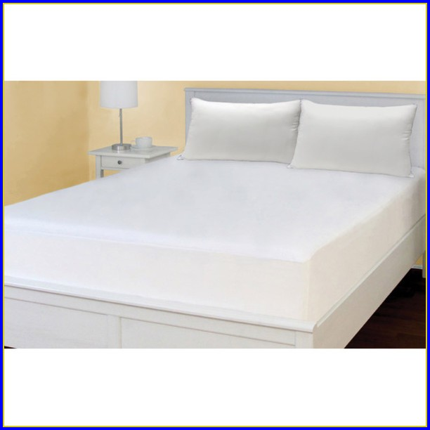 Bed Bug Mattress Protector Amazon