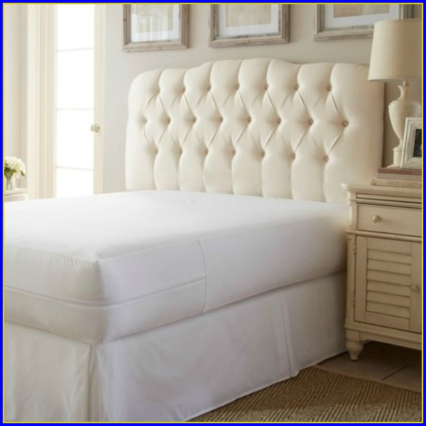 Bed Bug Mattress Protector California King