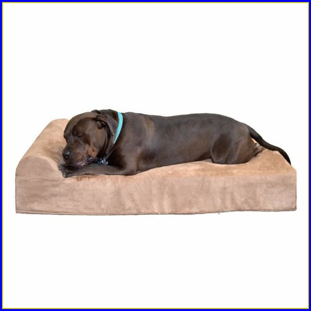 Petco Dog Beds Medium