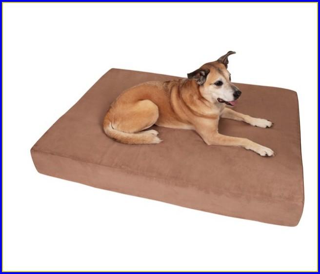 Petco Dog Beds Xl