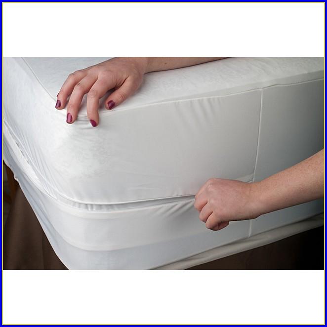Bed Bug Mattress Encasement King