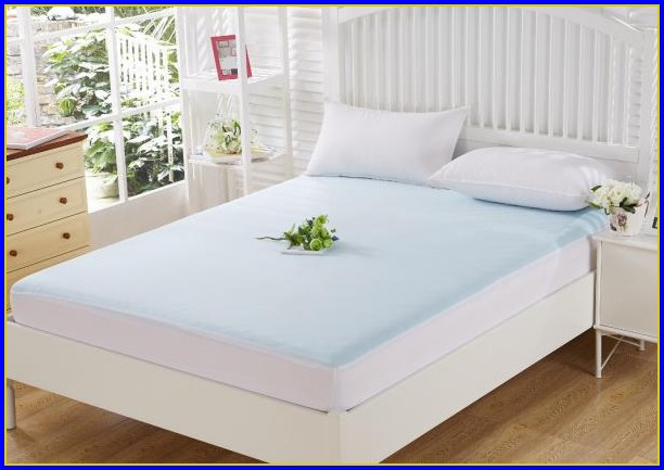 Bed Bug Mattress Encasement Protector
