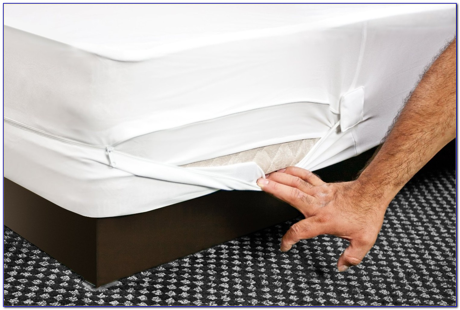 Bed Bug Proof Mattress Cover Amazon
