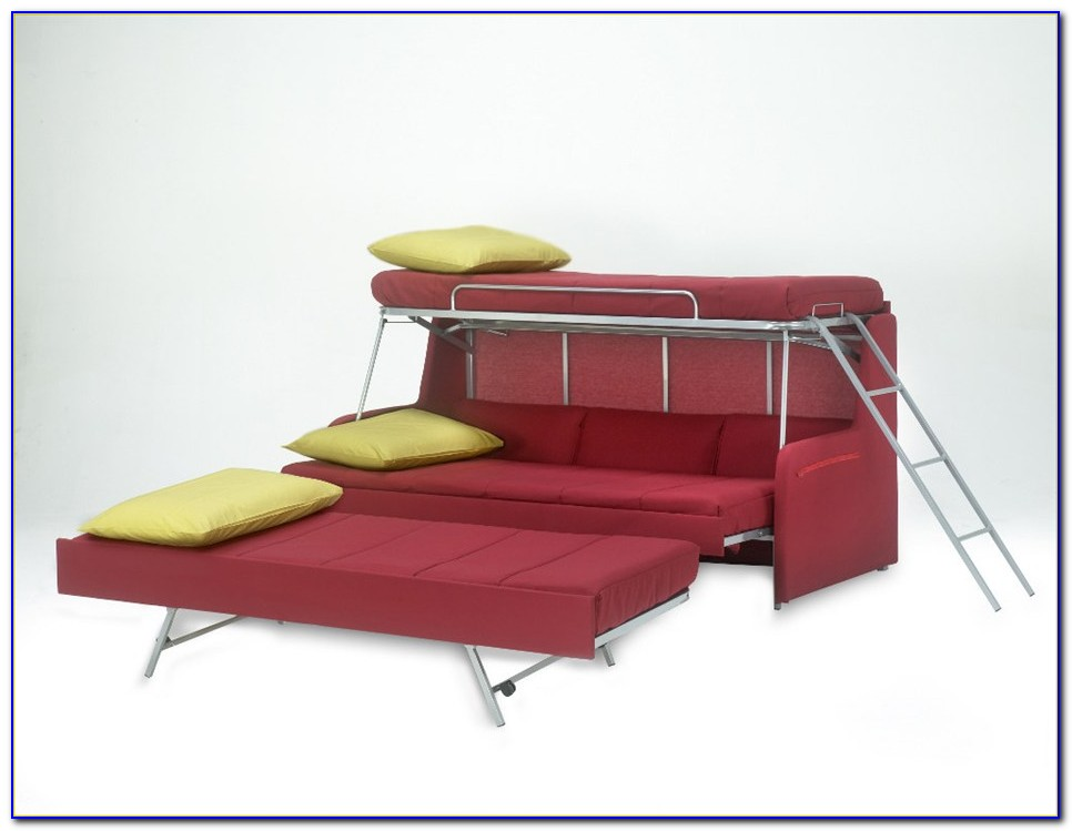 Couch That Turns Into Bunk Bed Proteas