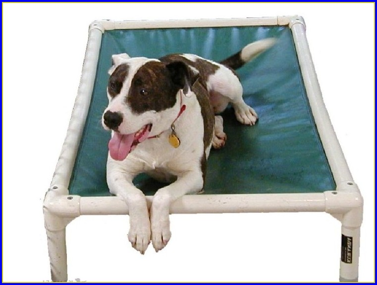 Kuranda Dog Beds Xxl