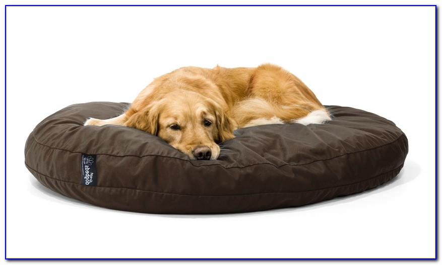 Memory Foam Dog Beds Australia