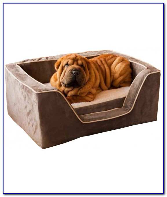 Memory Foam Dog Beds Extra Large