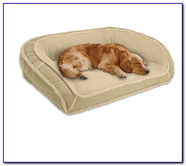 Memory Foam Dog Beds Made In Usa