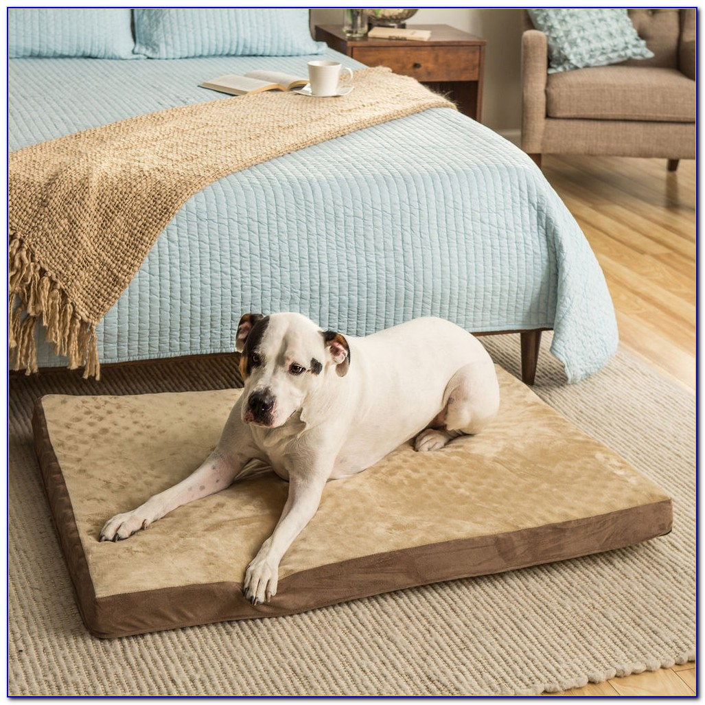 Memory Foam Dog Beds Uk