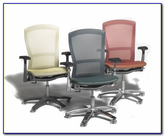 Knoll Life Chair Lumbar Support