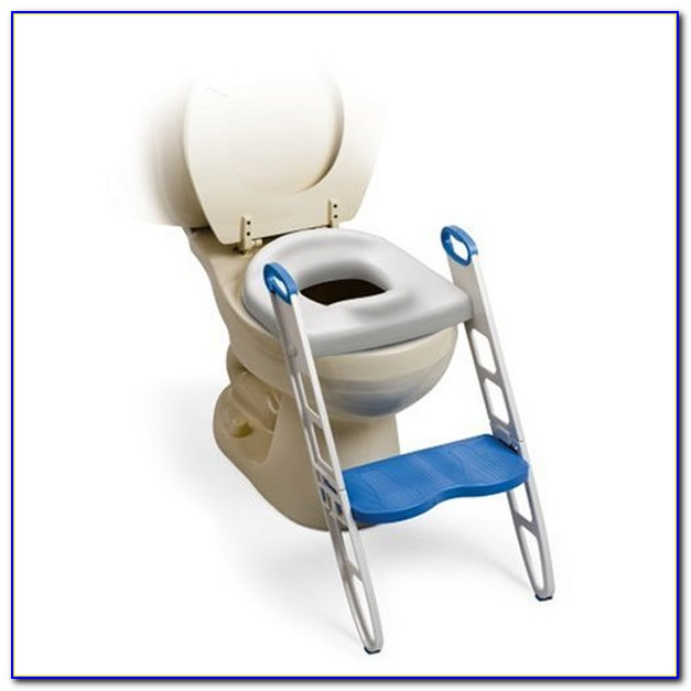 Toilet Training Potty Chairs