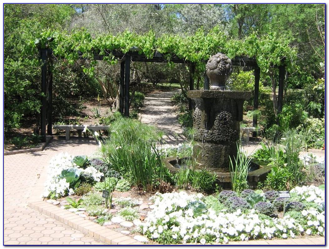 Botanical Gardens San Antonio Hours