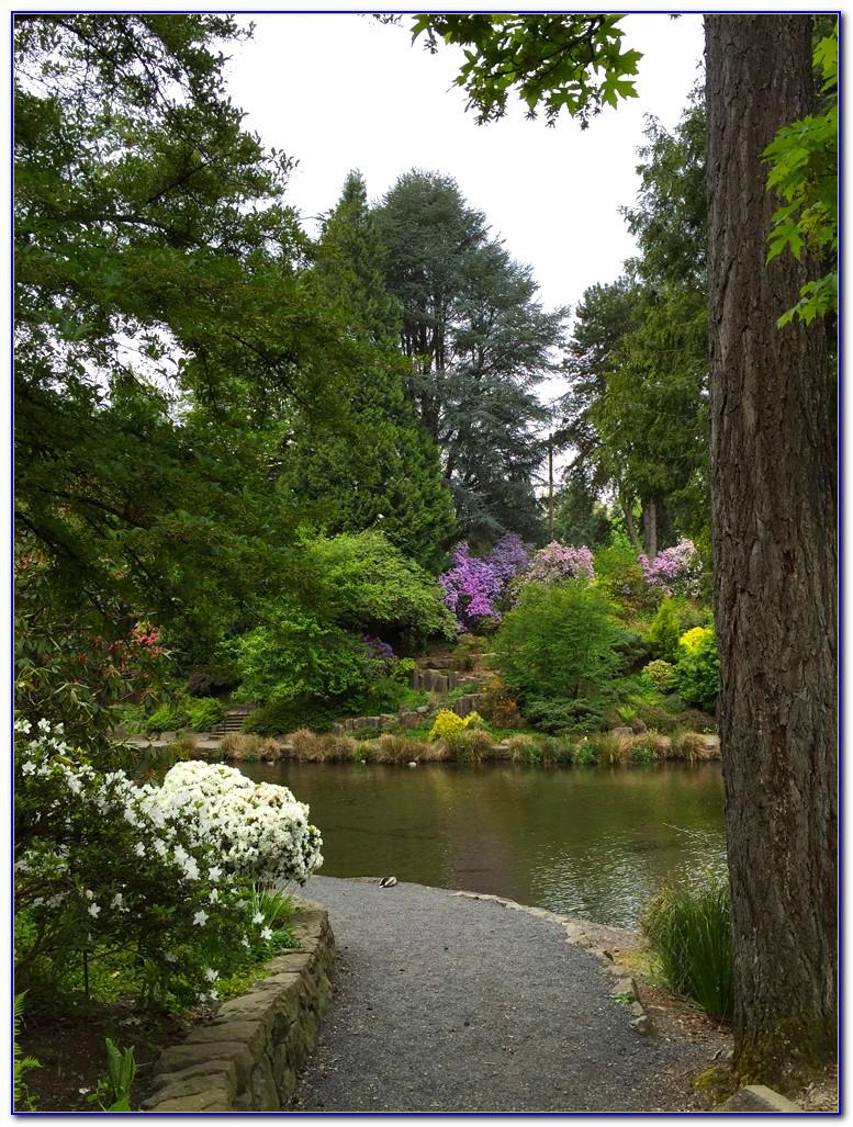 Crystal Springs Rhododendron Garden Map
