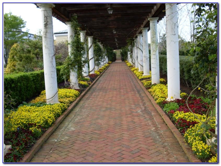 Daniel Stowe Botanical Garden Orchid Conservatory