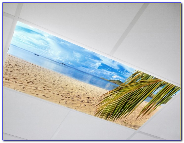 Decorative Fluorescent Light Covers Australia