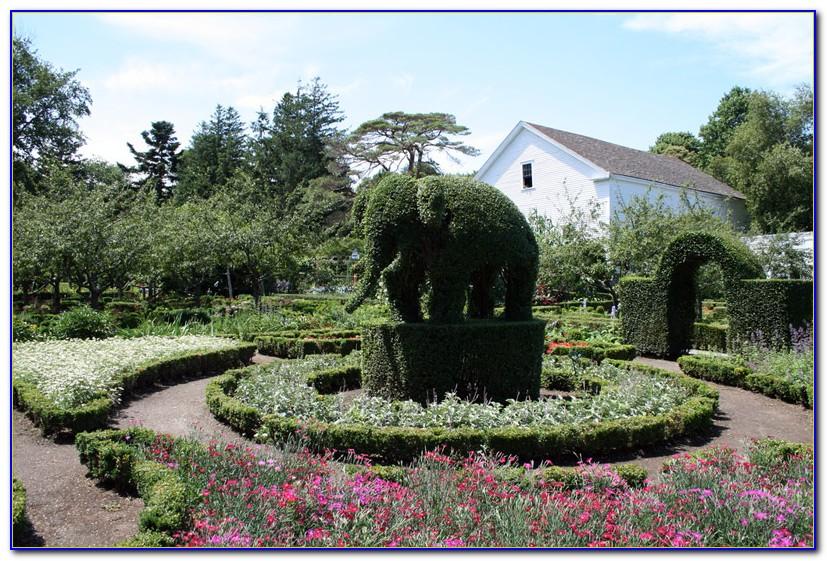 Green Animals Topiary Gardens Rhode Island