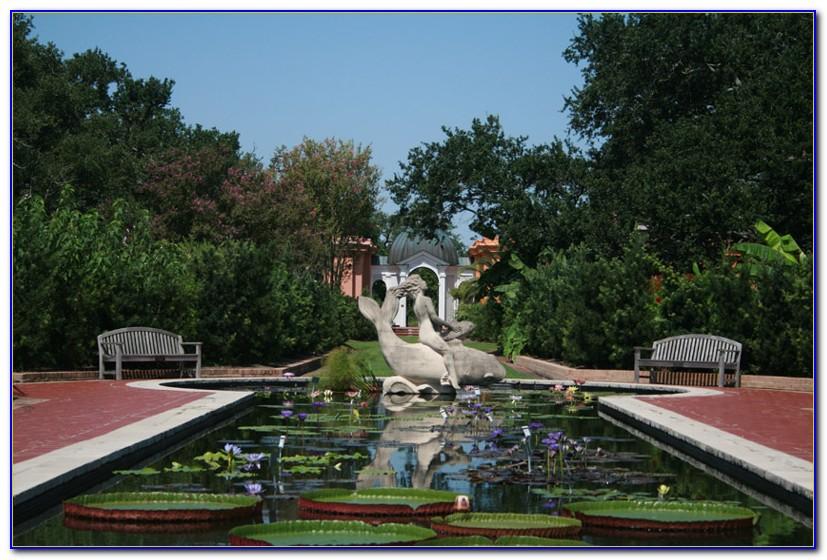 New Orleans Botanical Garden Show