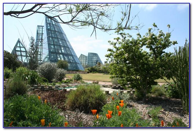 San Antonio Botanical Gardens Cafe