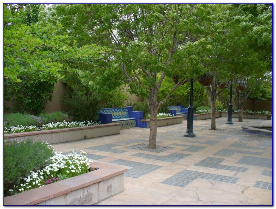 San Diego Botanical Gardens Events