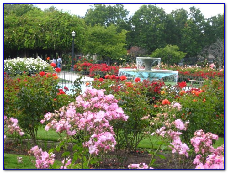 San Jose Municipal Rose Garden Address