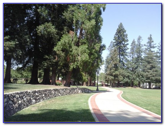San Jose Municipal Rose Garden Parking
