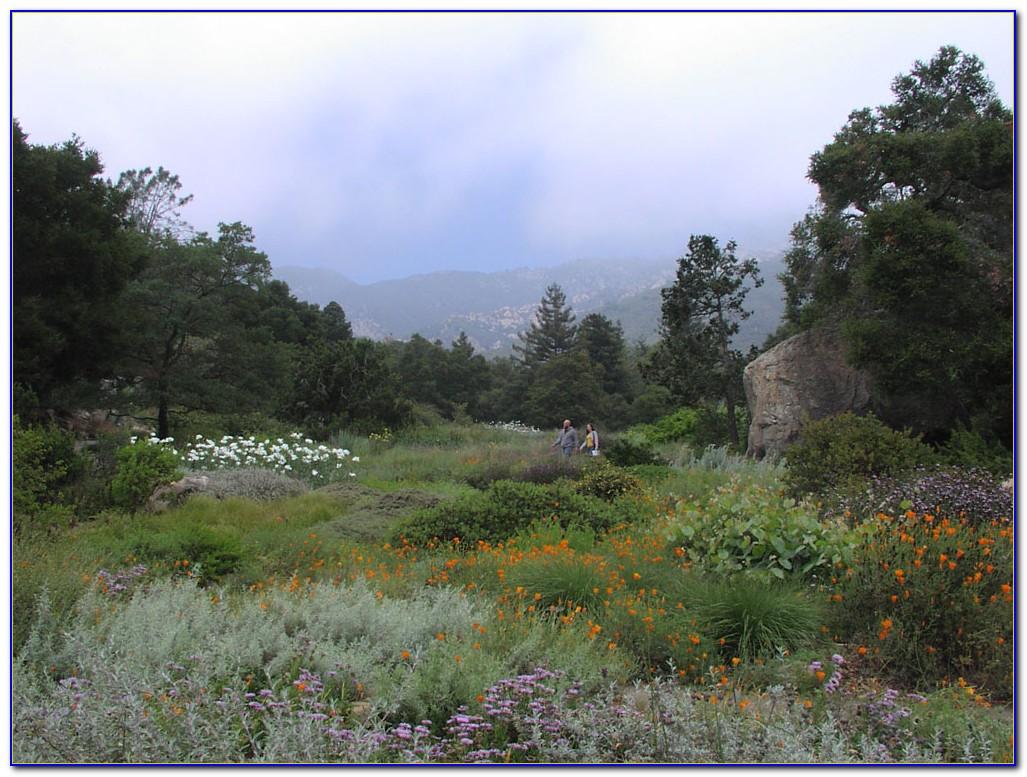 Santa Barbara Botanic Garden Admission